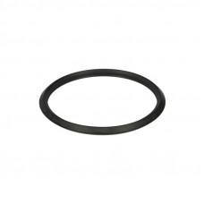 Прокладка (кольцо) термостата Actros